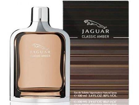 Picture for category JAGUAR